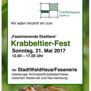 Krabbeltierfest-Flyer-Deckblatt